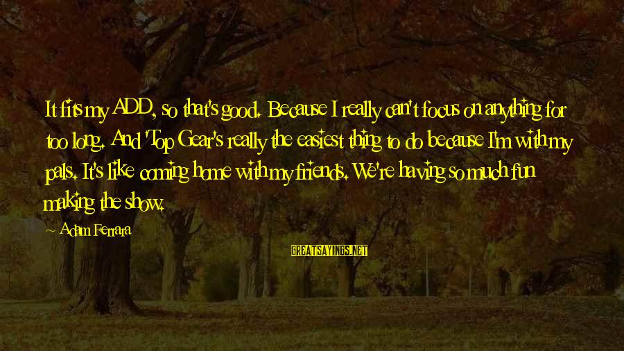 Friends And Having Fun Sayings By Adam Ferrara: It fits my ADD, so that's good. Because I really can't focus on anything for
