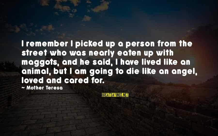 From Mother Sayings By Mother Teresa: I remember I picked up a person from the street who was nearly eaten up