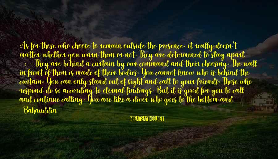 Front Sight Sayings By Bahauddin: As for those who choose to remain outside the presence, it really doesn't matter whether