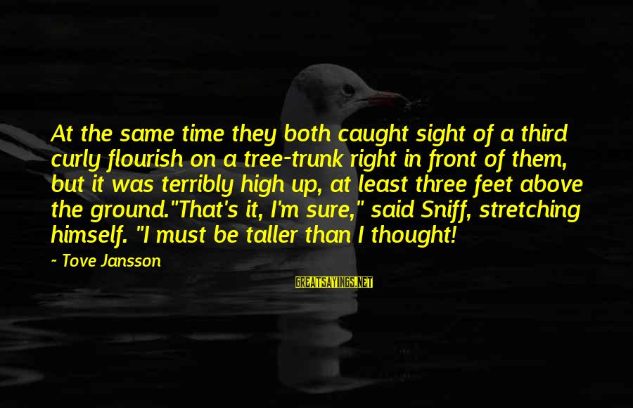 Front Sight Sayings By Tove Jansson: At the same time they both caught sight of a third curly flourish on a