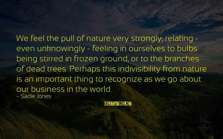 Frozen Nature Sayings By Sadie Jones: We feel the pull of nature very strongly, relating - even unknowingly - feeling in