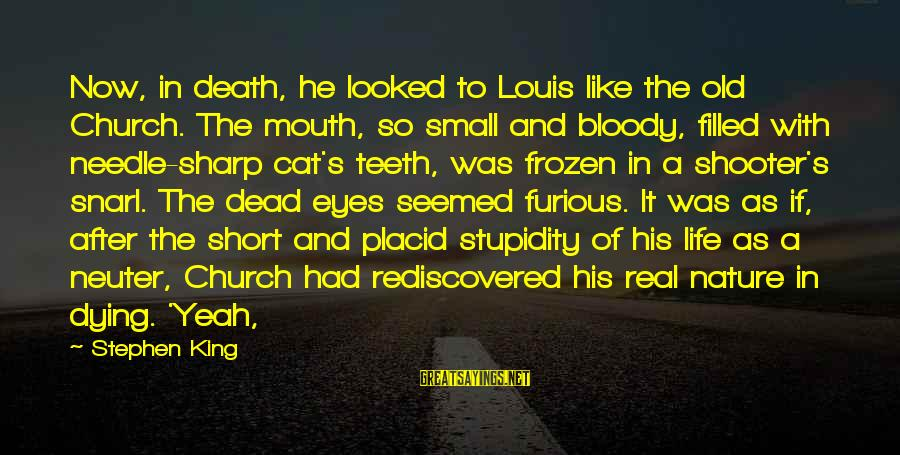 Frozen Nature Sayings By Stephen King: Now, in death, he looked to Louis like the old Church. The mouth, so small