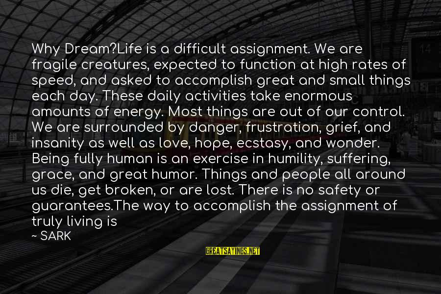 Frustration In Life Sayings By SARK: Why Dream?Life is a difficult assignment. We are fragile creatures, expected to function at high
