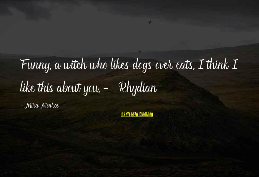Funny Dogs And Cats Sayings By Mira Monroe: Funny, a witch who likes dogs over cats. I think I like this about you.