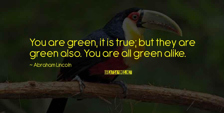 Funny Forgiveness Sayings By Abraham Lincoln: You are green, it is true; but they are green also. You are all green
