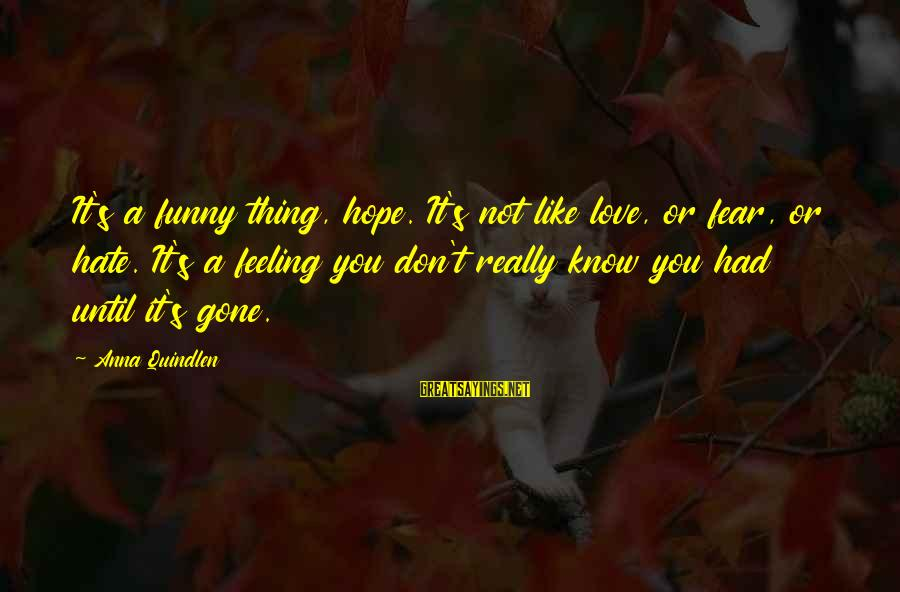 Funny I Don Hate You Sayings By Anna Quindlen: It's a funny thing, hope. It's not like love, or fear, or hate. It's a