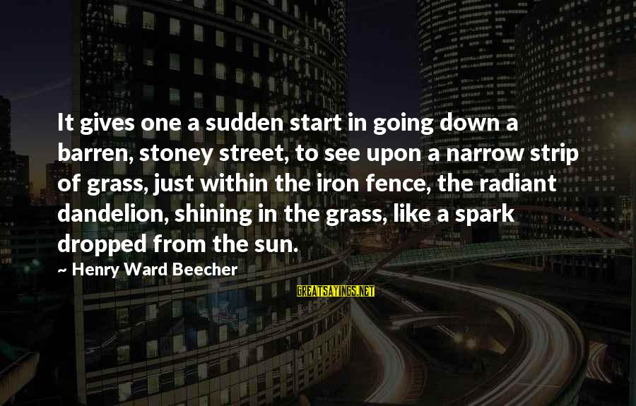 G.j Stoney Sayings By Henry Ward Beecher: It gives one a sudden start in going down a barren, stoney street, to see