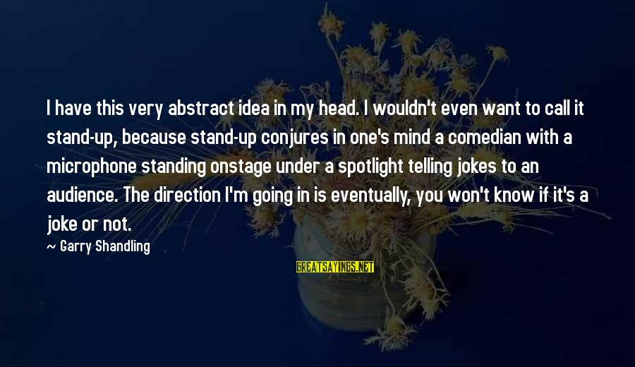 Garry Shandling Sayings By Garry Shandling: I have this very abstract idea in my head. I wouldn't even want to call