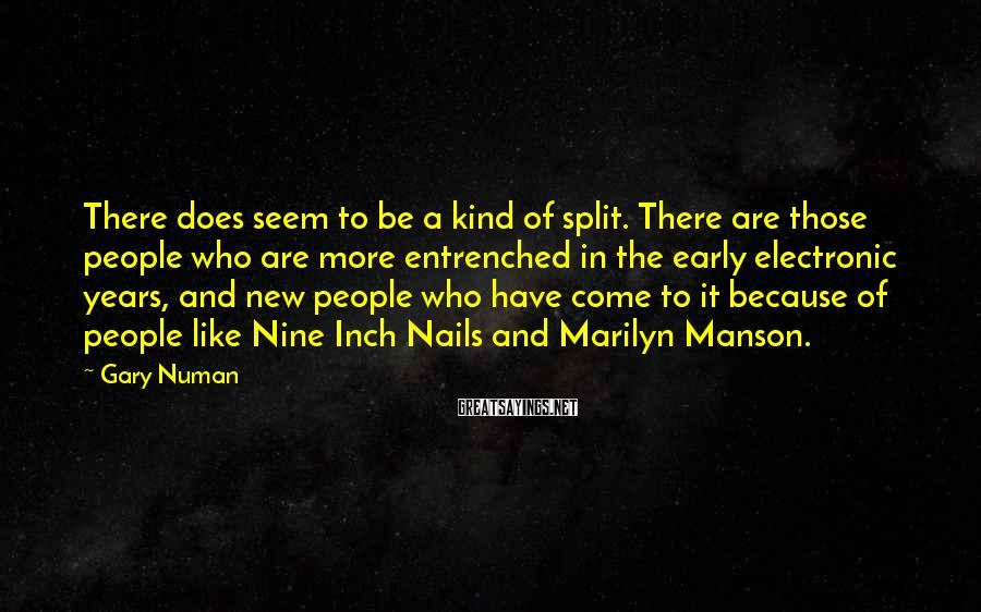 Gary Numan Sayings: There does seem to be a kind of split. There are those people who are