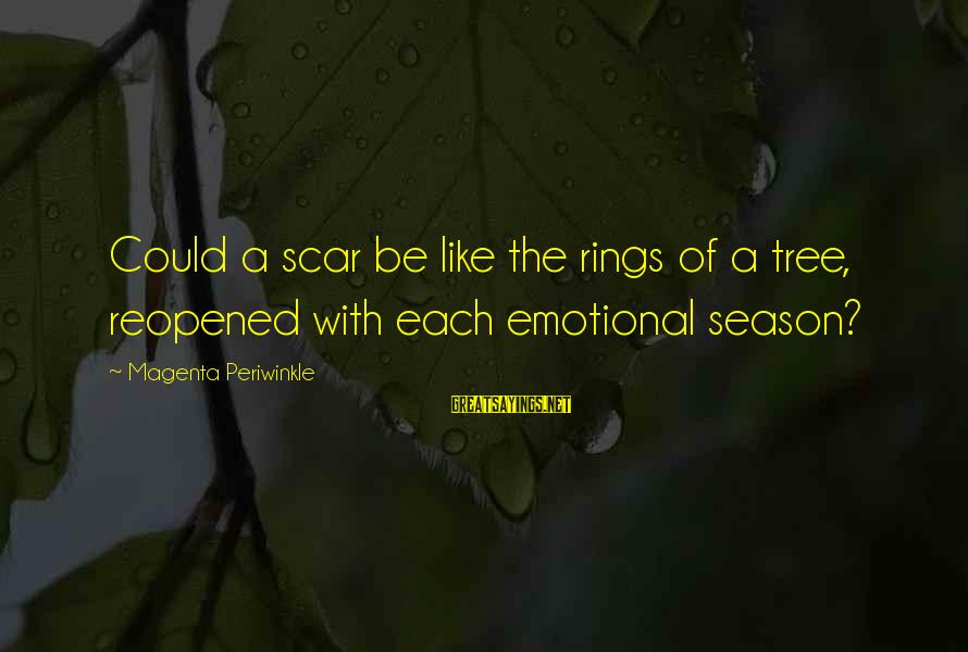 Geeks In Love Sayings By Magenta Periwinkle: Could a scar be like the rings of a tree, reopened with each emotional season?