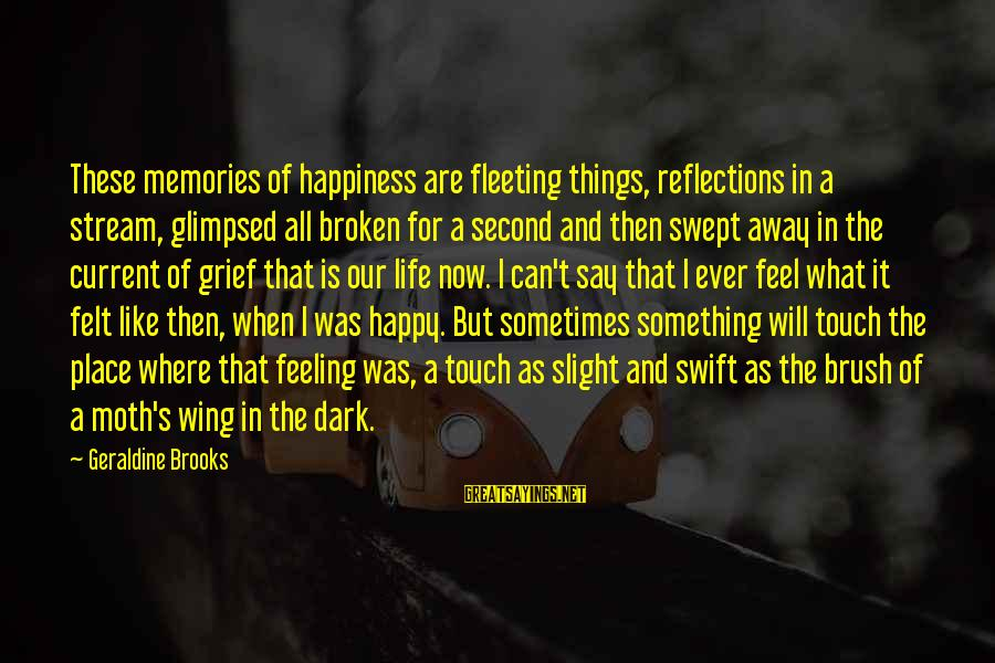 Geraldine's Sayings By Geraldine Brooks: These memories of happiness are fleeting things, reflections in a stream, glimpsed all broken for