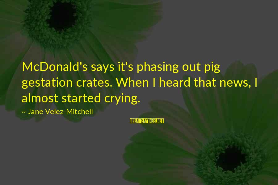 Gestation Crates Sayings By Jane Velez-Mitchell: McDonald's says it's phasing out pig gestation crates. When I heard that news, I almost