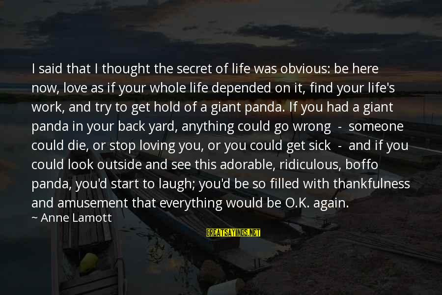 Get Outside Sayings By Anne Lamott: I said that I thought the secret of life was obvious: be here now, love