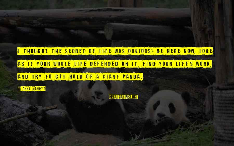 Giant Panda Sayings By Anne Lamott: I thought the secret of life was obvious: be here now, love as if your
