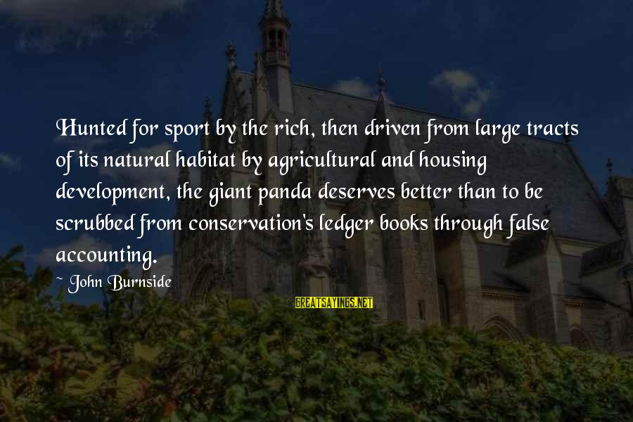 Giant Panda Sayings By John Burnside: Hunted for sport by the rich, then driven from large tracts of its natural habitat