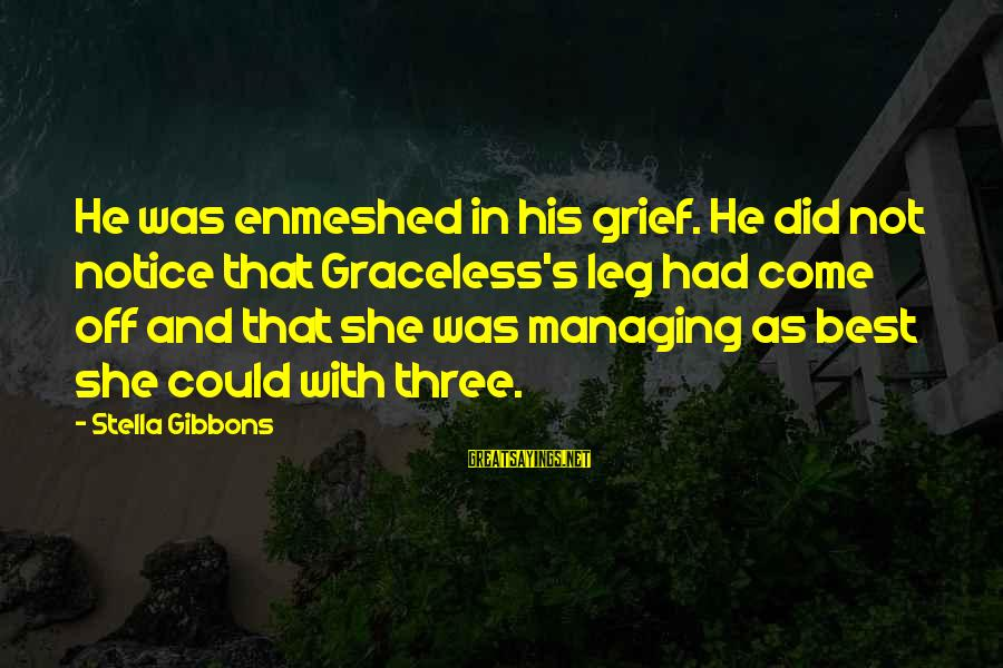 Gibbons's Sayings By Stella Gibbons: He was enmeshed in his grief. He did not notice that Graceless's leg had come