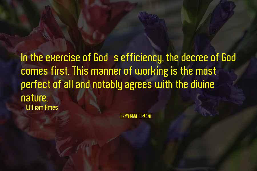 God Comes First Sayings By William Ames: In the exercise of God's efficiency, the decree of God comes first. This manner of
