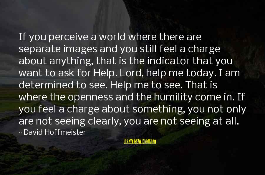 God Images And Sayings By David Hoffmeister: If you perceive a world where there are separate images and you still feel a