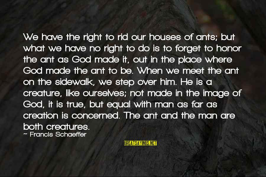 God Made Us Equal Sayings By Francis Schaeffer: We have the right to rid our houses of ants; but what we have no