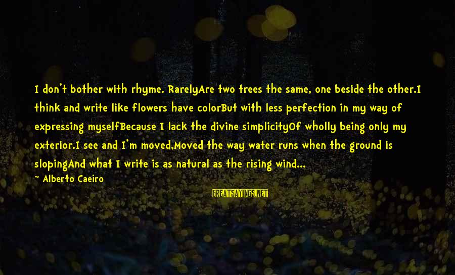 God That Rhyme Sayings By Alberto Caeiro: I don't bother with rhyme. RarelyAre two trees the same, one beside the other.I think