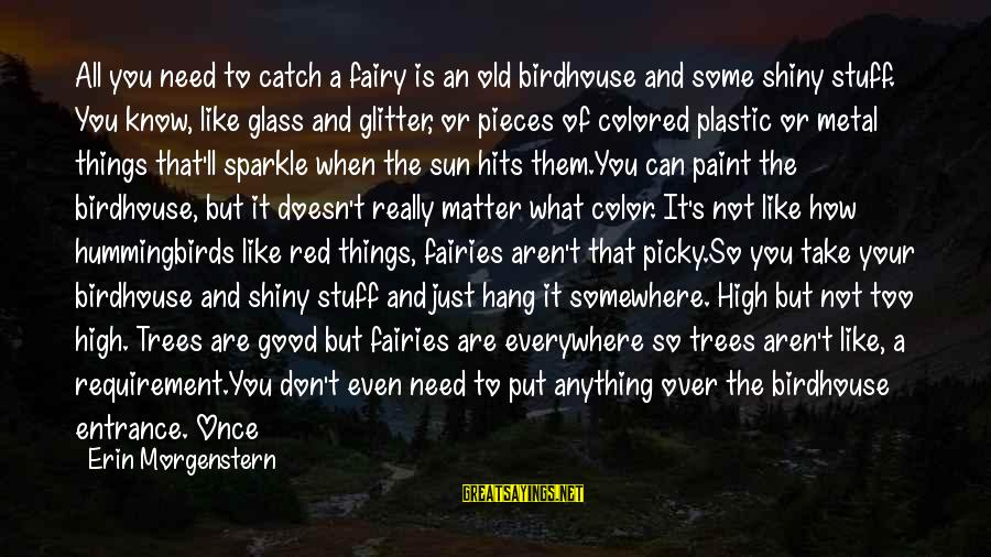 Good Fairies Sayings By Erin Morgenstern: All you need to catch a fairy is an old birdhouse and some shiny stuff.
