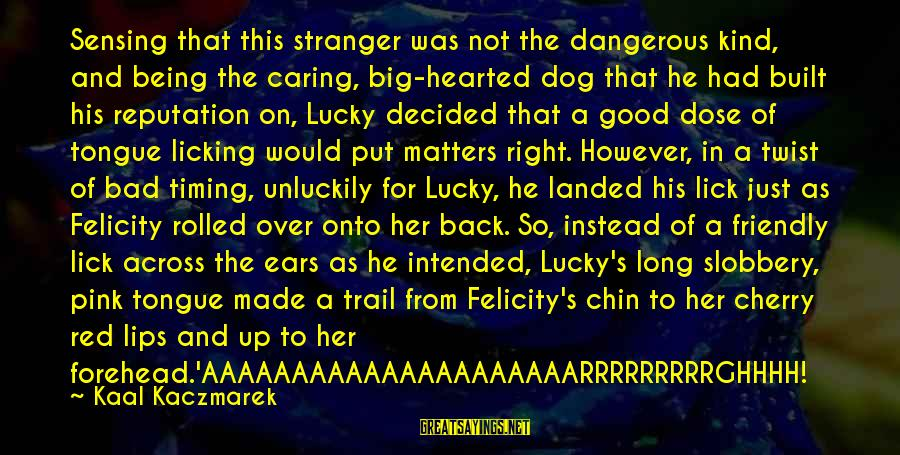 Good Hearted Sayings By Kaal Kaczmarek: Sensing that this stranger was not the dangerous kind, and being the caring, big-hearted dog