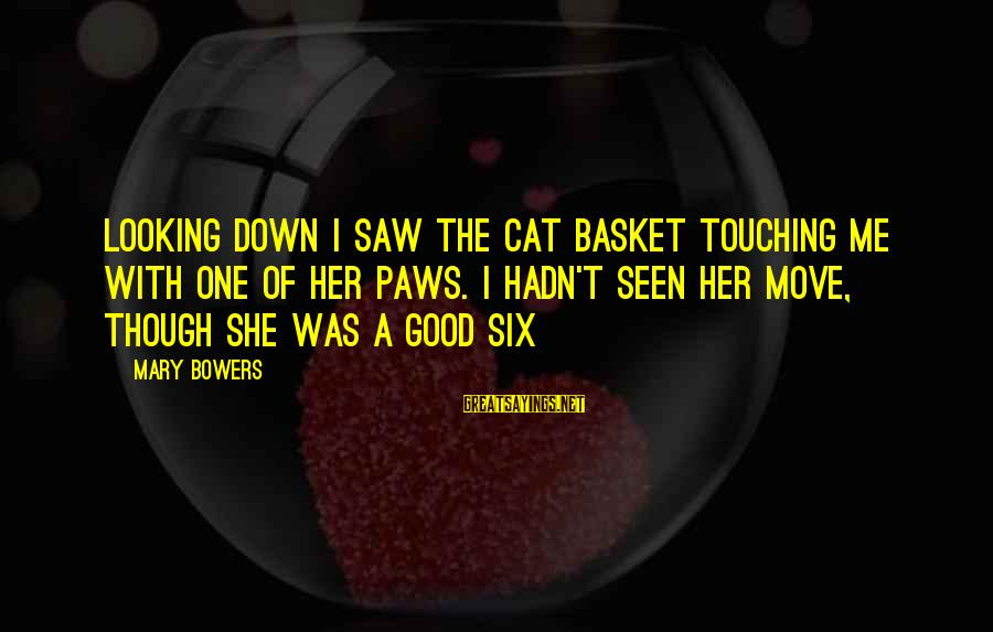 Good Looking Sayings By Mary Bowers: Looking down I saw the cat Basket touching me with one of her paws. I