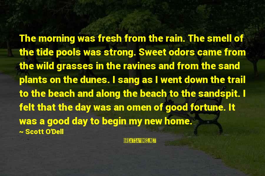Good Omen Sayings By Scott O'Dell: The morning was fresh from the rain. The smell of the tide pools was strong.