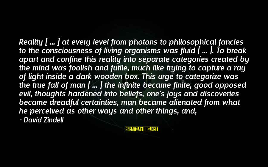 Good Soul Sayings By David Zindell: Reality [ ... ] at every level from photons to philosophical fancies to the consciousness