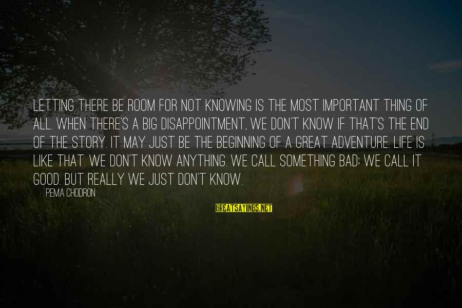 Good Unknown Sayings By Pema Chodron: Letting there be room for not knowing is the most important thing of all. When