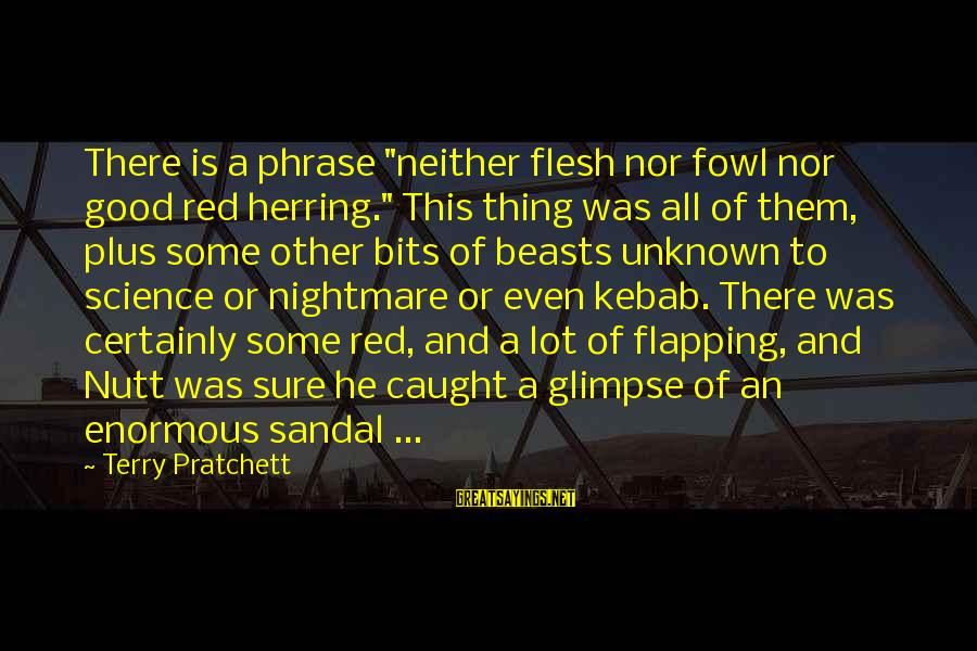 """Good Unknown Sayings By Terry Pratchett: There is a phrase """"neither flesh nor fowl nor good red herring."""" This thing was"""