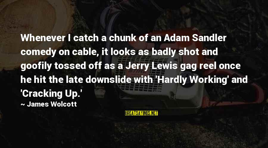 Goofily Sayings By James Wolcott: Whenever I catch a chunk of an Adam Sandler comedy on cable, it looks as