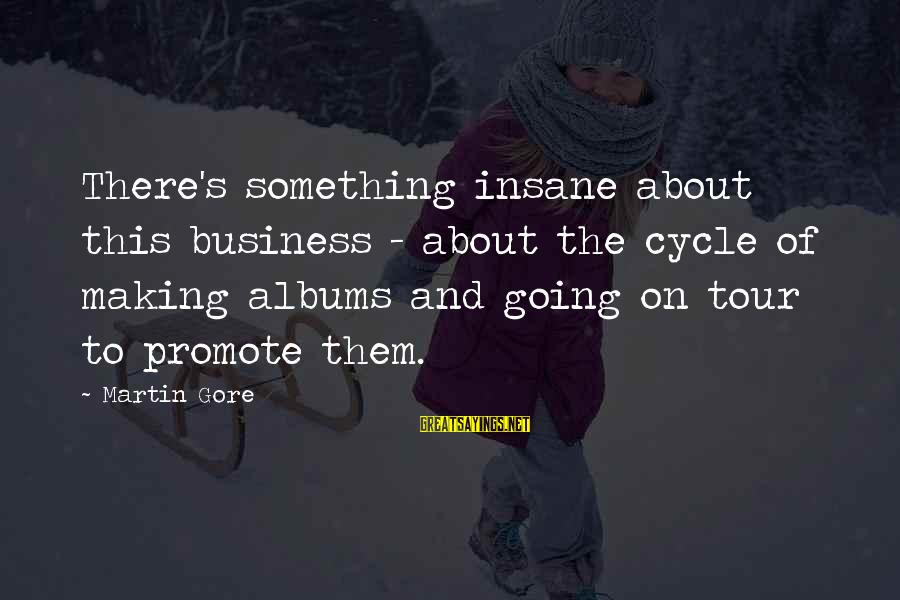 Gore Sayings By Martin Gore: There's something insane about this business - about the cycle of making albums and going