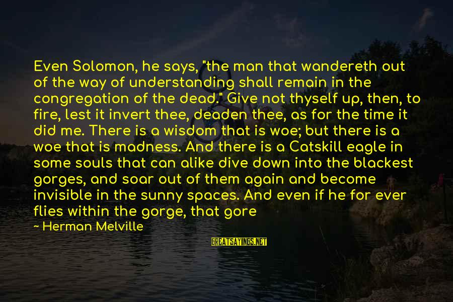 """Gorges Sayings By Herman Melville: Even Solomon, he says, """"the man that wandereth out of the way of understanding shall"""