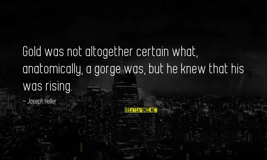 Gorges Sayings By Joseph Heller: Gold was not altogether certain what, anatomically, a gorge was, but he knew that his