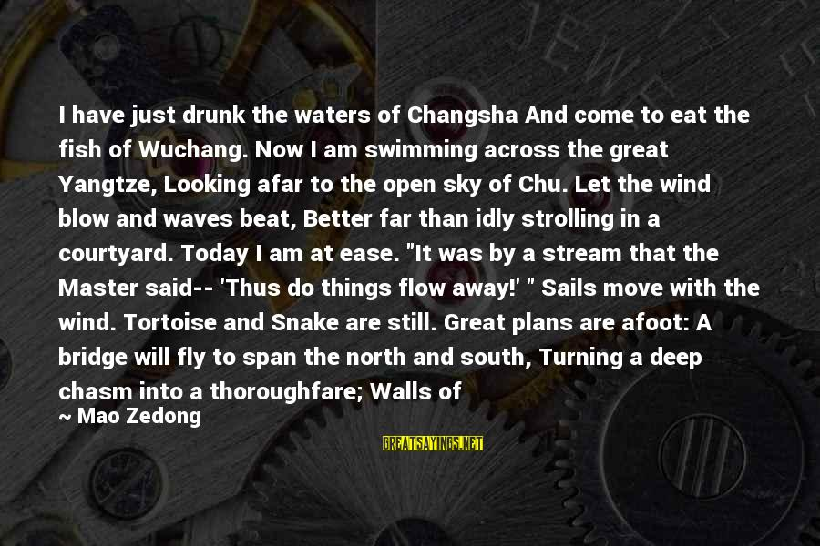 Gorges Sayings By Mao Zedong: I have just drunk the waters of Changsha And come to eat the fish of