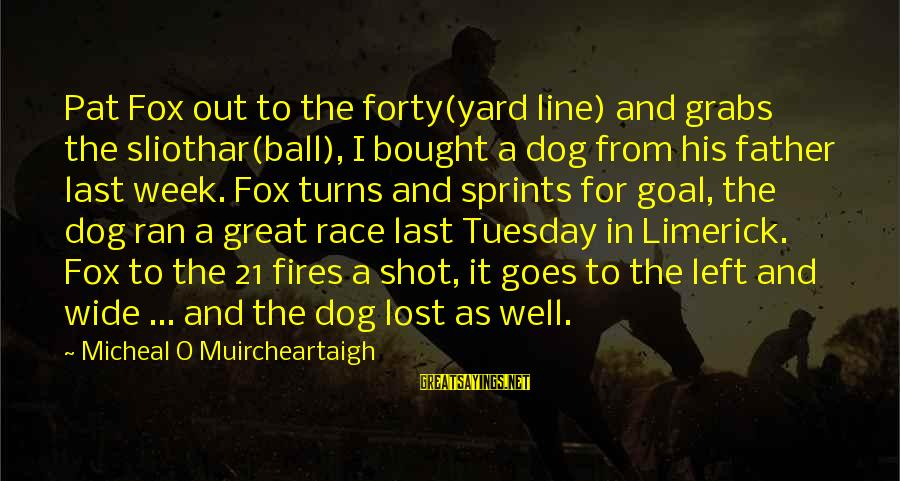 Great 1 Line Sayings By Micheal O Muircheartaigh: Pat Fox out to the forty(yard line) and grabs the sliothar(ball), I bought a dog