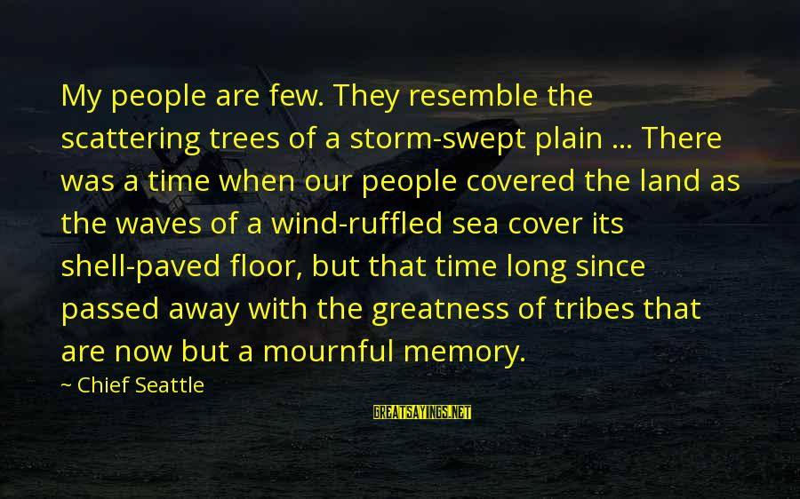 Greatness Of America Sayings By Chief Seattle: My people are few. They resemble the scattering trees of a storm-swept plain ... There
