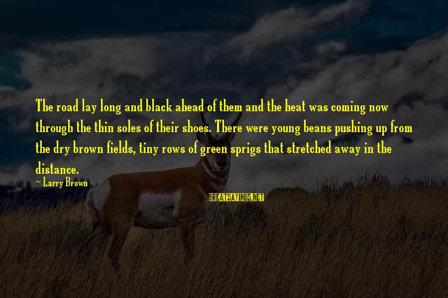 Green Beans Sayings By Larry Brown: The road lay long and black ahead of them and the heat was coming now