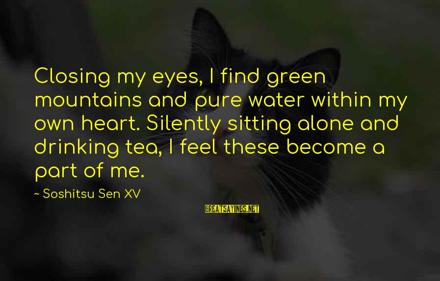 Green Eyes Sayings By Soshitsu Sen XV: Closing my eyes, I find green mountains and pure water within my own heart. Silently