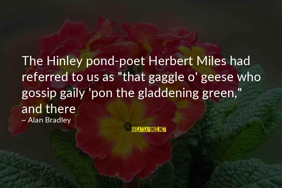 """Green Miles Sayings By Alan Bradley: The Hinley pond-poet Herbert Miles had referred to us as """"that gaggle o' geese who"""