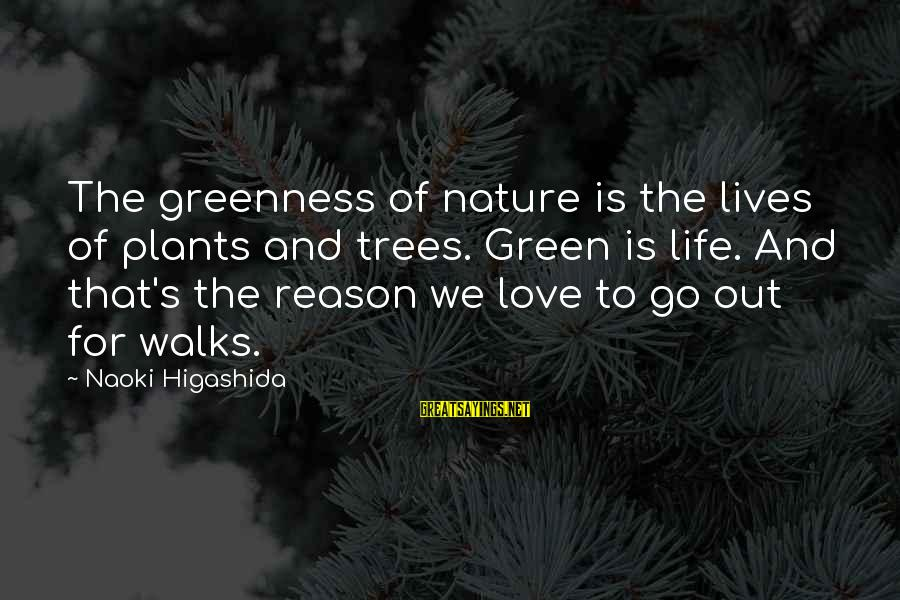 Green Plants Sayings By Naoki Higashida: The greenness of nature is the lives of plants and trees. Green is life. And