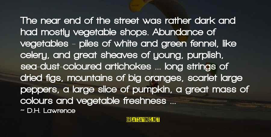 Green Street 2 Sayings By D.H. Lawrence: The near end of the street was rather dark and had mostly vegetable shops. Abundance