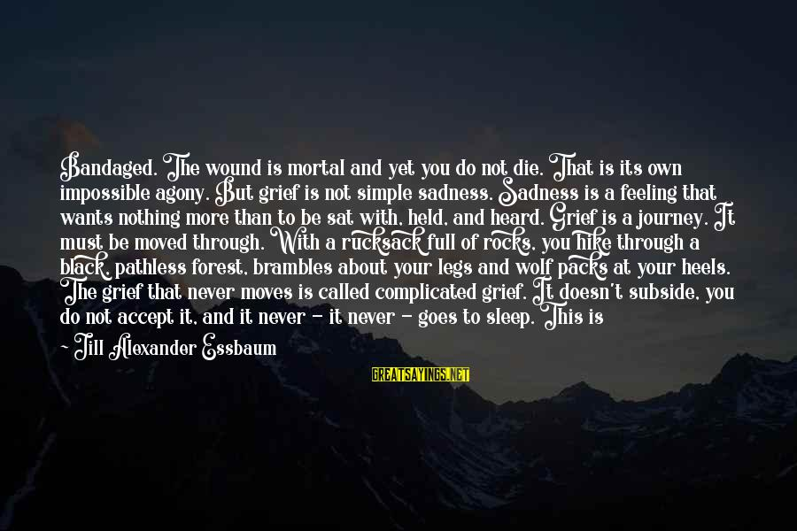 Grief And Sadness Sayings By Jill Alexander Essbaum: Bandaged. The wound is mortal and yet you do not die. That is its own