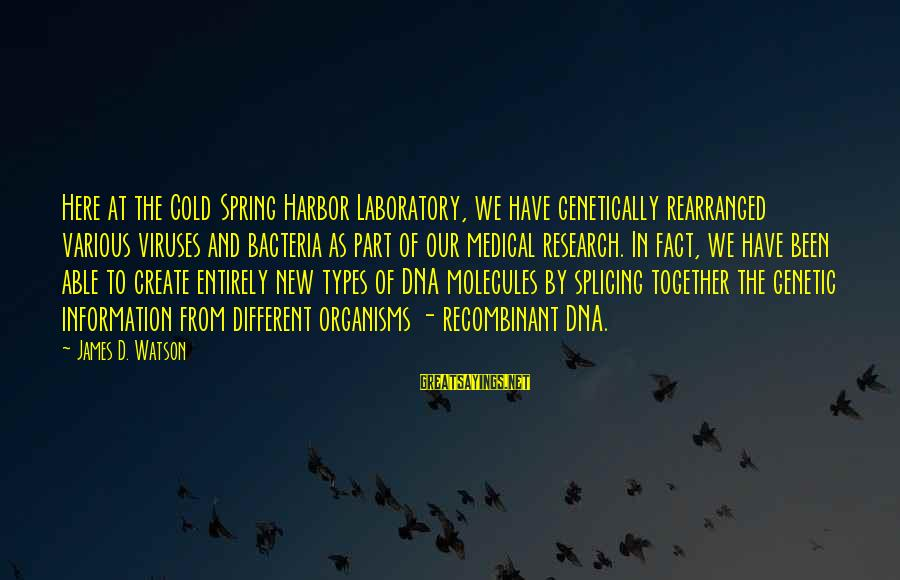 Griffin And Phoenix Memorable Sayings By James D. Watson: Here at the Cold Spring Harbor Laboratory, we have genetically rearranged various viruses and bacteria