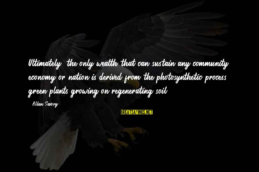 Growing Plants Sayings By Allan Savory: Ultimately, the only wealth that can sustain any community, economy or nation is derived from