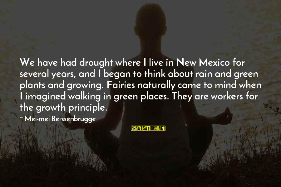 Growing Plants Sayings By Mei-mei Berssenbrugge: We have had drought where I live in New Mexico for several years, and I