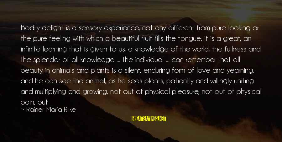Growing Plants Sayings By Rainer Maria Rilke: Bodily delight is a sensory experience, not any different from pure looking or the pure