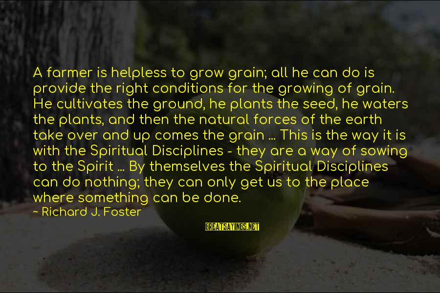 Growing Plants Sayings By Richard J. Foster: A farmer is helpless to grow grain; all he can do is provide the right