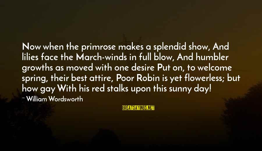Growths Sayings By William Wordsworth: Now when the primrose makes a splendid show, And lilies face the March-winds in full